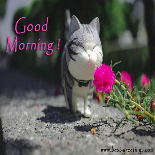 Add Name On Good morning Image